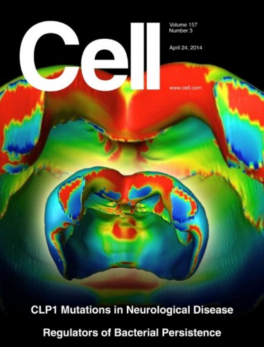 cell-24-april-2014
