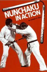 <!--enpts-->nunchakuaction.jpg<!--enpte-->