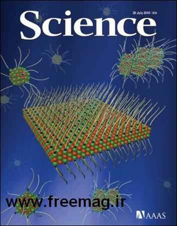 sciencejuly2010
